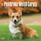 Welsh Corgis, Pembroke - 2018 Calendar Kalenders