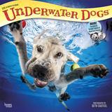 Underwater Dogs - 2018 Calendar Kalenders