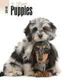 I Love Puppies - 2018 Planner Calendars
