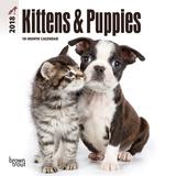 Kittens & Puppies - 2018 Mini Calendar Calendriers