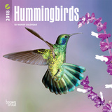 Hummingbirds - 2018 Mini Calendar Calendars
