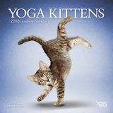 Yoga Kittens - 2018 Mini Calendar Calendars