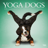 Yoga Dogs - 2018 Calendar Calendarios