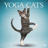 Yoga Cats - 2018 Calendar Calendarios