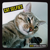 Cat Selfies - 2018 Calendar Kalenders