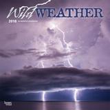Wild Weather - 2018 Calendar Kalenders