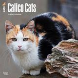 Calico Cats - 2018 Calendar Calendars