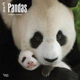 Pandas - 2018 Calendar Kalenders