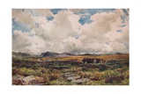 Stacking Peat, Festiniog, North Wales, 1881 Giclee Print by Thomas Collier