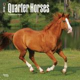 Quarter Horses - 2018 Calendar Calendars