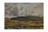 A Path over the Fields, 1881 Giclee Print by Thomas Collier