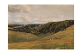 Arundel Park, with Deer, 1880 Giclee Print by Thomas Collier