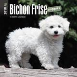 Bichon Frise Puppies - 2018 Mini Calendar Calendriers