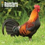 Roosters - 2018 Calendar Calendars