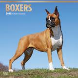 Boxers - 2018 Calendar Kalenders