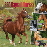 365 Days of Horses - 2018 Calendar Calendars