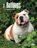 Bulldogs - 2018 Planner Kalenders