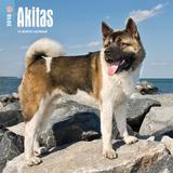Akitas - 2018 Calendar Calendars