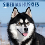 Siberian Huskies - 2018 Calendar Kalenders