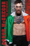 Conor Mcgregor - The Notorious Poster