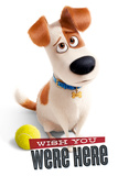 The Secret Life Of Pets - Wish You Were Here Plakat
