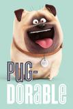 The Secret Life Of Pets - Pug-Dorable Plakater