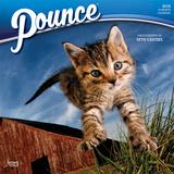 Pounce - 2018 Calendar Calendars