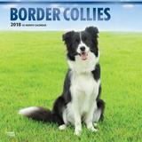 Border Collies - 2018 Calendar Calendars