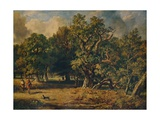 Windsor Forest, c1835 Giclee Print by James Stark