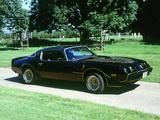 1979 Pontiac Firebird Trans Am Photographic Print