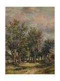 A Lane near Norwich, c1837 Giclee Print by James Stark