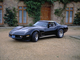 1980 Chevrolet Corvette Stingray Photographic Print