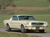 1966 Ford Mustang Fastback Photographic Print