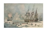 Northern Whale Fishery, c1829 Giclee Print by Edward Duncan