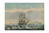 South Sea Whale Fishery, 1825 Giclee Print by Thomas Sutherland