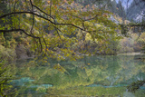 Colorful Lake in Jiuzhaigou Nature Reserve and National Park Located in China Photographic Print by Ami Vitale