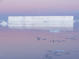 Adelie Penguins, Pygoscelis Adeliae, on the Weddell Sea in Front of a Tabular Iceberg Photographic Print by Jeff Mauritzen