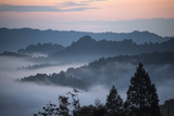 Sunrise at Bifengxia Giant Panda Breeding and Research Center in Sichuan Province Photographic Print by Ami Vitale