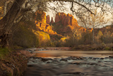 Sycamores and Cottonwoods in Fall Color Frame Sedona's Cathedral Rock and Oak Creek Photographic Print by Derek Von Briesen