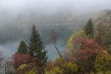 Long Lake in Jiuzhaigou Nature Reserve and National Park Located in the China Photographic Print by Ami Vitale