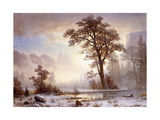 Valley of the Yosemite - Snow Fall Giclee Print by Albert Bierstadt