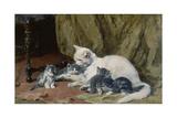 Katze mit vier Jungen auf einem alten Teppich Giclee Print by Julius Adam
