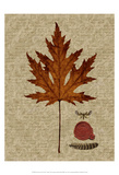 Autumn Leaf I Prints by Sandy Lloyd