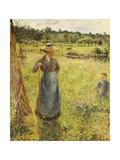 The Haymaker (La Faneuse). 1884 Giclee Print by Camille Pissarro