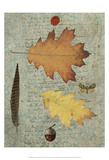 Autumn Leaf III Prints by Sandy Lloyd