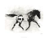 Rustic Appaloosa I Limited Edition by Ethan Harper