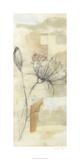 Neutral Lace I Limited Edition by Jennifer Goldberger