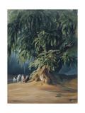 Ahuehuete Tree Giclee Print by Johann Moritz Rugendas