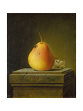 Still-life with pear and insects. 1765 Giclee Print by Justus Juncker