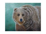 Brown Bear Art by Julie Peterson
